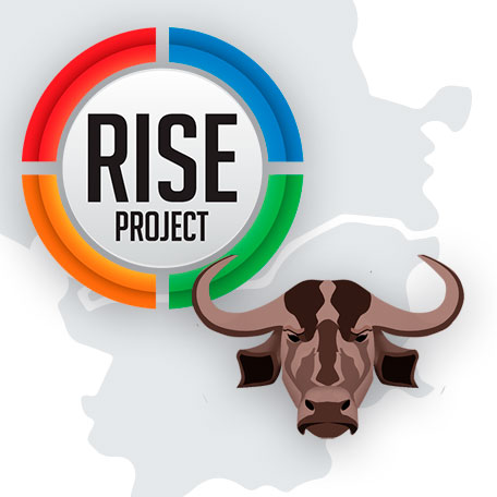 rise project and bivol